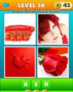 4-pics-1-word-2-level-26-7148567