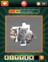 scratch-pics-1-word-level-30-5366275