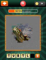 scratch-pics-1-word-level-39-4203657