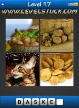 words-and-pics-pack-1-17-8245469
