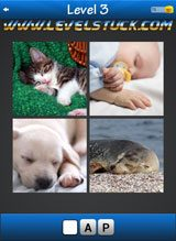 words-and-pics-pack-1-3-5947323