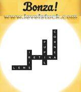 bonza-word-puzzle-pack-9-3005001