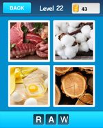 guess_the_word_level-22-9359465